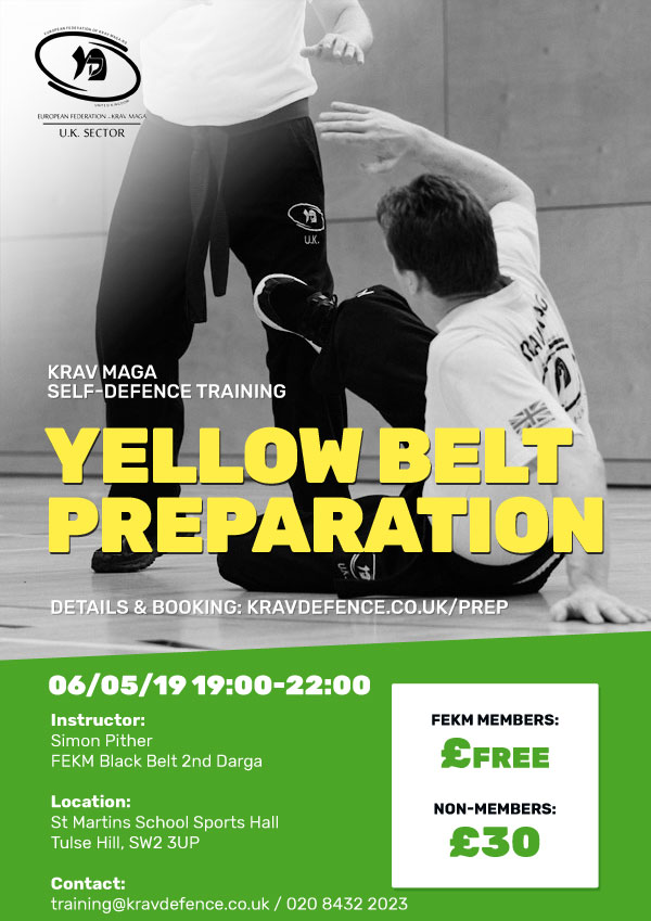 Yellow Belt Preparation Course